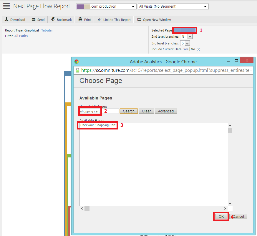 omniture next page flow report