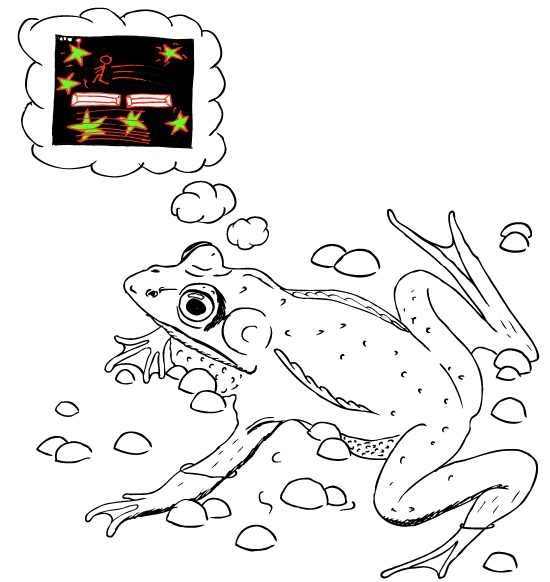 Frog with website
