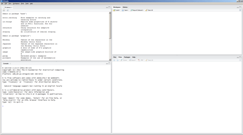 The RStudio interface.